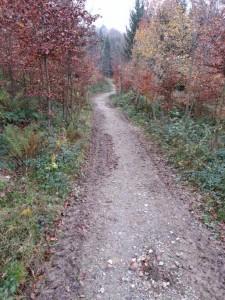 Le chemin qui descend depuis Chénens vers la cabane des bucherons de Lentigny a été refait. Il avait beaucoup souffert du passage du rallye. Il est maintenant empruntable par tous les temps