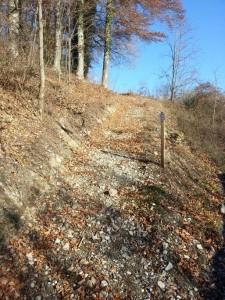 """Un chemin de liaison depuis le lieu-dit """"vieux Moulin"""" de Corserey, jusqu'à la sortie de la forêt près de l'écurie Marius Galley a été créé. Il est assez délicat et ne peut être emprunté que par temps sec."""