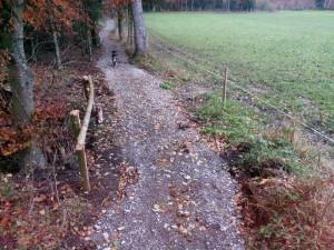 Un chemin en dur a été aménagé sur le sentier à la sortie de la forêt côté Villarimboud. Il est ainsi possible en tout temps d'éviter de passer dans le pré.